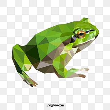 polygonal style frog, Amphibian, Realism, Animal PNG and Vector