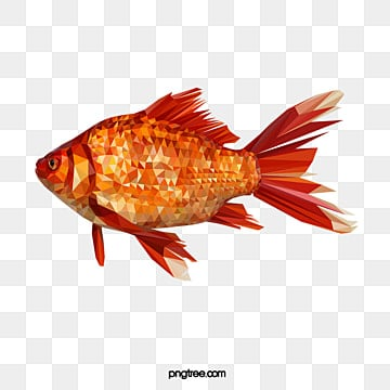 polygonal style goldfish, Realism, Animal, Polygon PNG and Vector