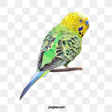 polygonal style tiger parrot, Realism, Animal, Polygon PNG and Vector