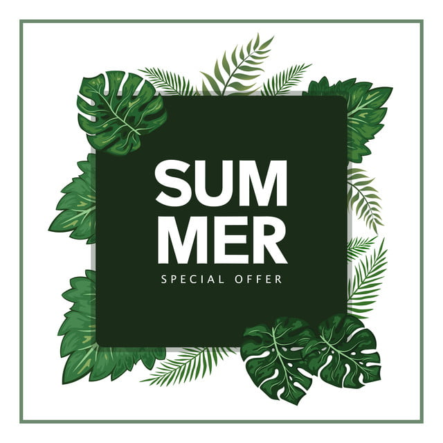 Summer Banner Tropical Leaf Summer Banner Tropic Png And Vector With Transparent Background For Free Download
