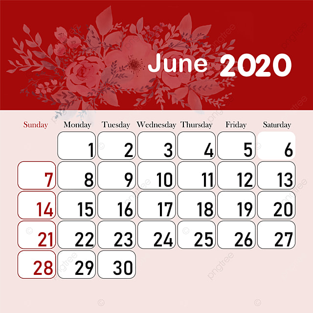 month calendar 2020 june template for free download on pngtree