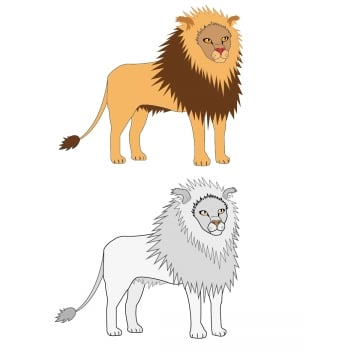 White Lion Png Vector Psd And Clipart With Transparent Background For Free Download Pngtree 20 inches by 16 inches. white lion png vector psd and