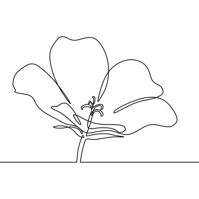 Dessin Au Trait Continu Du Dessin De Minimalisme De Fleur En