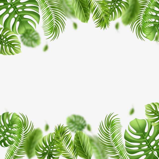 Tropical Foliage Background:  Tropical Summer Forest Flower Leaves Frame, Graphic