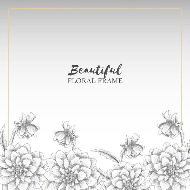 Bingkai Bunga Dahlia Bunga Tangan Yang Ditarik Gaya Vintage Dalam Warna Hitam Dan Putih Seni Musim Gugur Latar Belakang Png Dan Vektor Dengan Latar Belakang Transparan Untuk Unduh Gratis