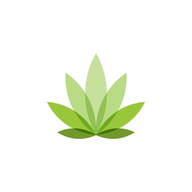 pngtree cannabis leaf logo designs inspiration isolated on white backgro png image 1716445