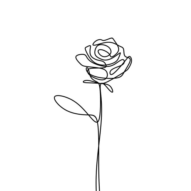 Continuous Line Drawing Of Rose Flower Minimalism Design