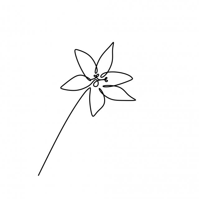 Fleur De Lys Dessin Continu Continue Une Ligne Isolée Sur