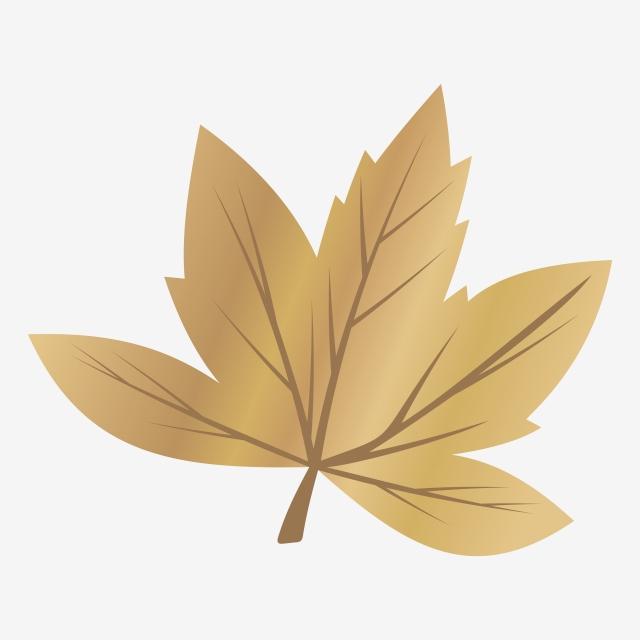 黄金のカエデの葉紅葉のイラスト イエロー オレンジ 11月画像素材の無料ダウンロードのためのpngとベクトル