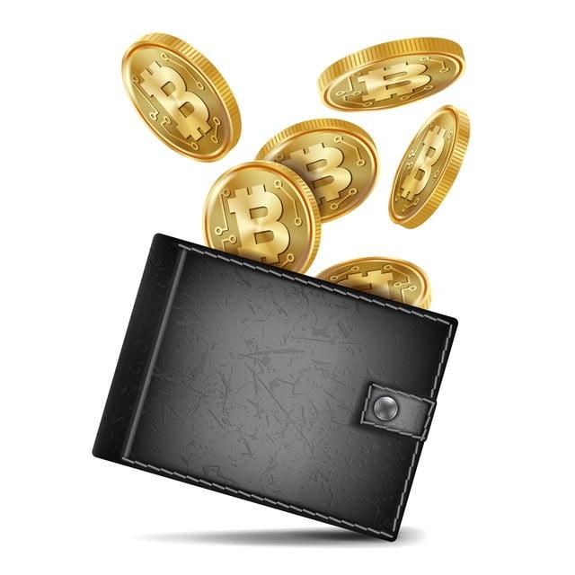 Bitcoin: anche l'Ucraina legalizza la criptovaluta - luigirota.it