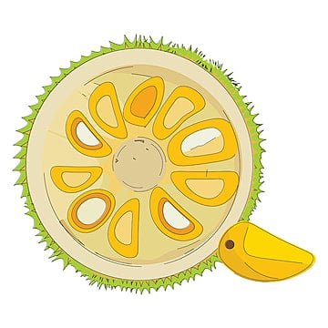 Jackfruit Png Images Vector And Psd Files Free Download On Pngtree 800 x 800 jpeg 174 кб. jackfruit png images vector and psd