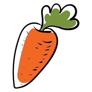Zanahoria Dibujo Png Vectores Psd E Clipart Para Descarga Gratuita Pngtree Aprende a dibujar una zanahoria a lápiz (+ colorear). zanahoria dibujo png vectores psd e