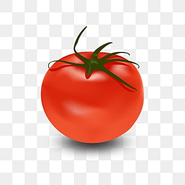 Clipart - Tomato Clipart – Stunning free transparent png clipart images free  download