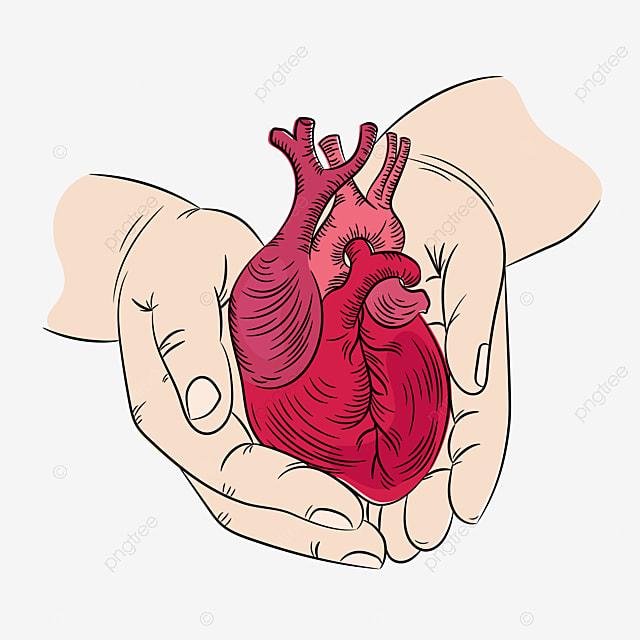 heart and hands health symbol medicine human hand draw vector illustration print set