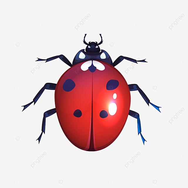 Coccinelle Rouge Taches Noires Scarabee Insecte Vue De Dessus Clipart De Coccinelle Coccinelle Punaise Png Et Vecteur Pour Telechargement Gratuit