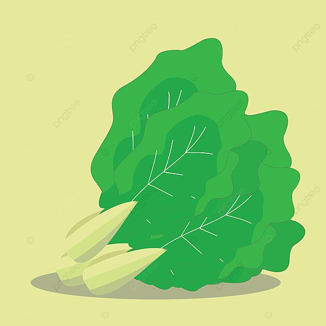 Gambar Ilustrasi Datar Mustard Hijau Terisolasi Pada Latar Belakang Polos Cocok Untuk Wallpaper Spanduk Anak Buku Ilustrasi Kartu Undangan Brosur Desain Web Makanan Sehat Seni Warna Memasak Png Dan Vektor Dengan Latar
