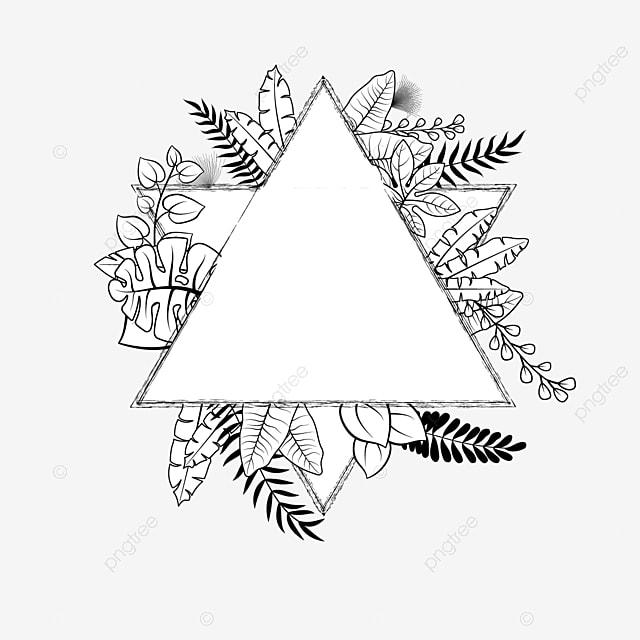 Doodle Tanaman Tropis Bingkai Heksagram Bingkai Vektor Hitam Putih Segitiga Segi Enam Segi Tiga Png Dan Vektor Dengan Latar Belakang Transparan Untuk Unduh Gratis