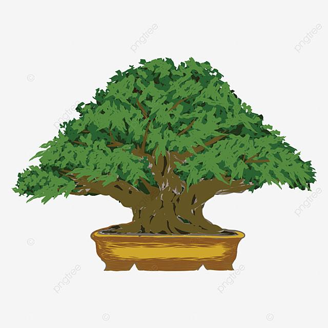 Vektor Gambar Pokok Beringin Dengan Latar Belakang Putih Pokok Banyan Pertanian Watak Gambar Png Dan Vektor Untuk Muat Turun Percuma