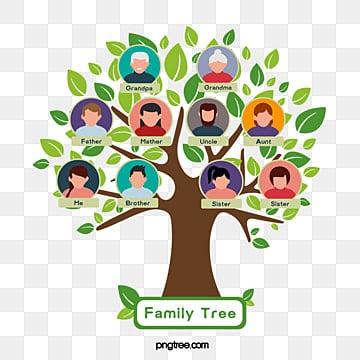 شجرة العائلة Png الصور ناقل و Psd الملفات تحميل مجاني على Pngtree
