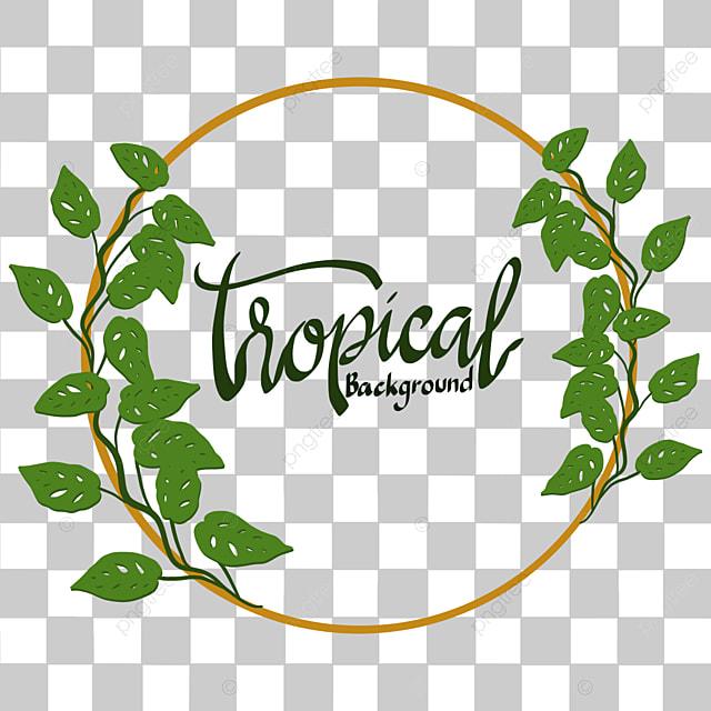 latar belakang bingkai daun tropis dengan daun monstera tropis monstera hijau png dan vektor dengan latar belakang transparan untuk unduh gratis latar belakang bingkai daun tropis