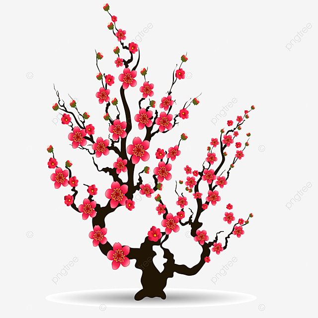 apricot blossom element for chinese new year