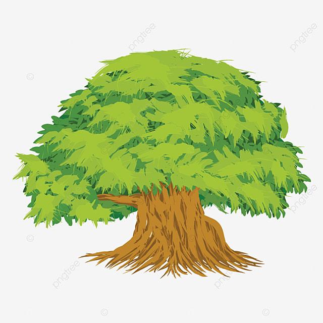 Gambar Vektor Gambar Pokok Beringin Dengan Latar Belakang Putih Beringin Pokok Pertanian Png Dan Vektor Untuk Muat Turun Percuma