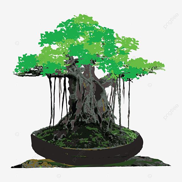 Gambar Vektor Gambar Pokok Beringin Dengan Latar Belakang Putih Pokok Banyan Pokok Pertanian Png Dan Vektor Untuk Muat Turun Percuma