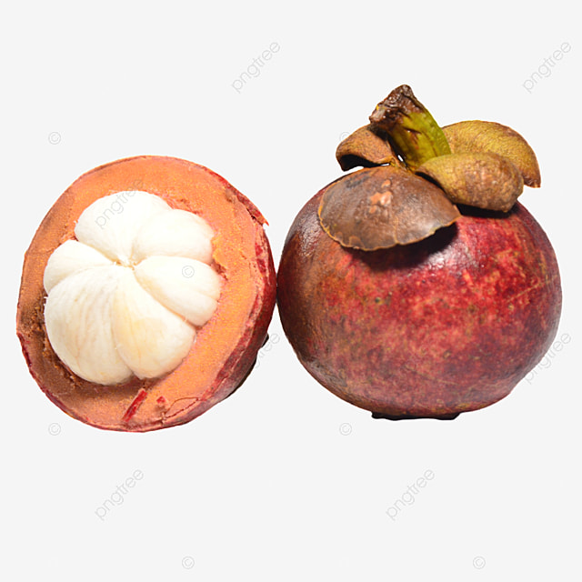 two opened delicious mangosteen pulp