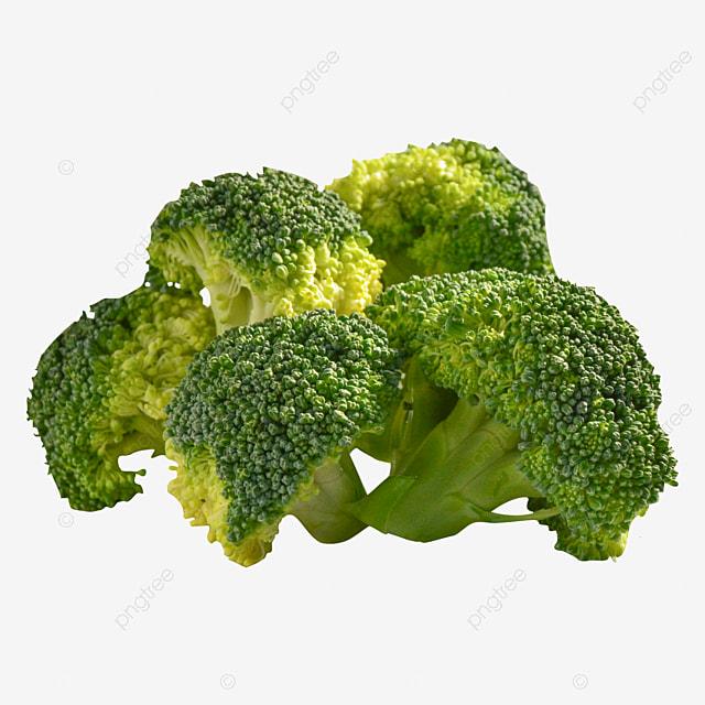 Lima Bunga Brokoli Hijau Yang Lezat Lima Segar Dewasa Png Gambar Transparan Dan Clipart Untuk Unduhan Gratis