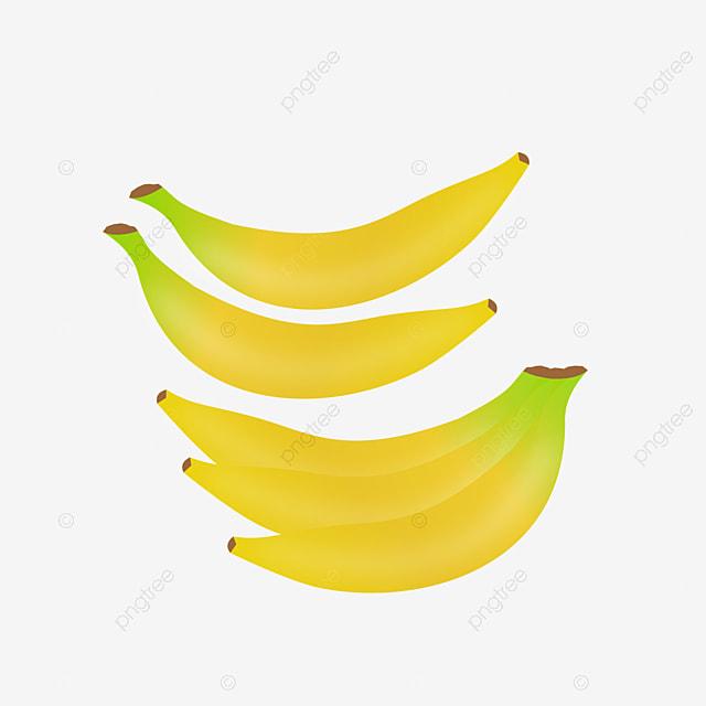 unduhan vektor pisang pisang buah makanan png dan vektor dengan latar belakang transparan untuk unduh gratis pngtree