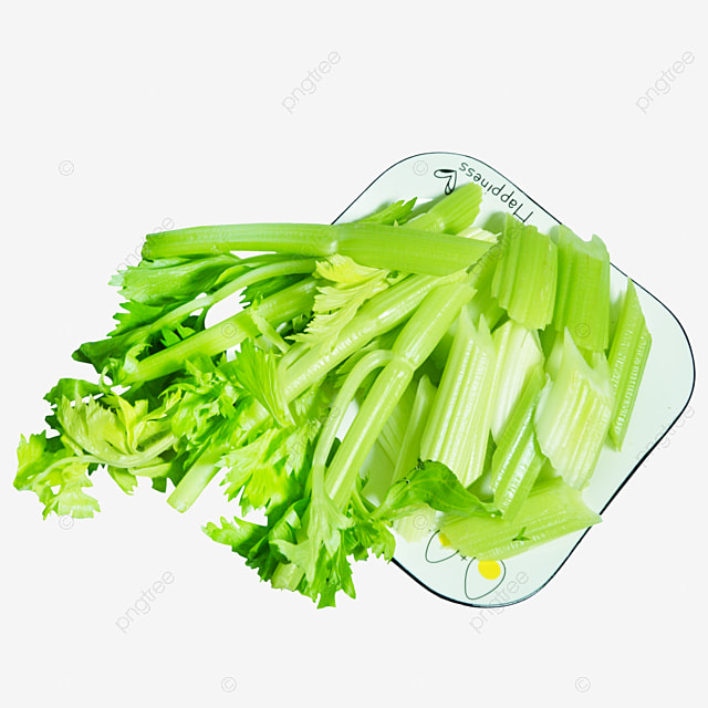 Square Plate Of Chopped Celery Square Plate Cut Into Sections Celery Png Transparent Image And Clipart For Free Download