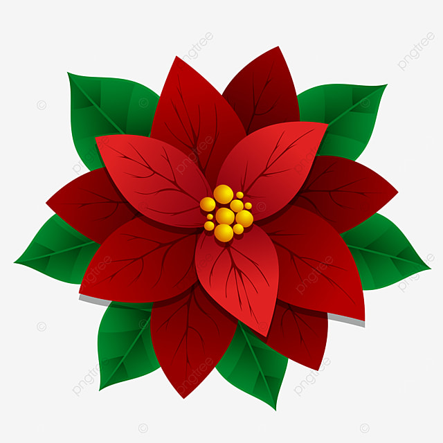 Beautiful Red Poinsettia Flower Christmas Decoration Xmas Ornament With Leaves Hockey Stick Clipart Poinsettia Christmas Png And Vector With Transparent Background For Free Download