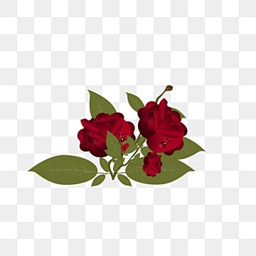 Rose Vector Png Images Roses Red Rose Rose Border Vectors In Ai Eps Format Free Download On Pngtree