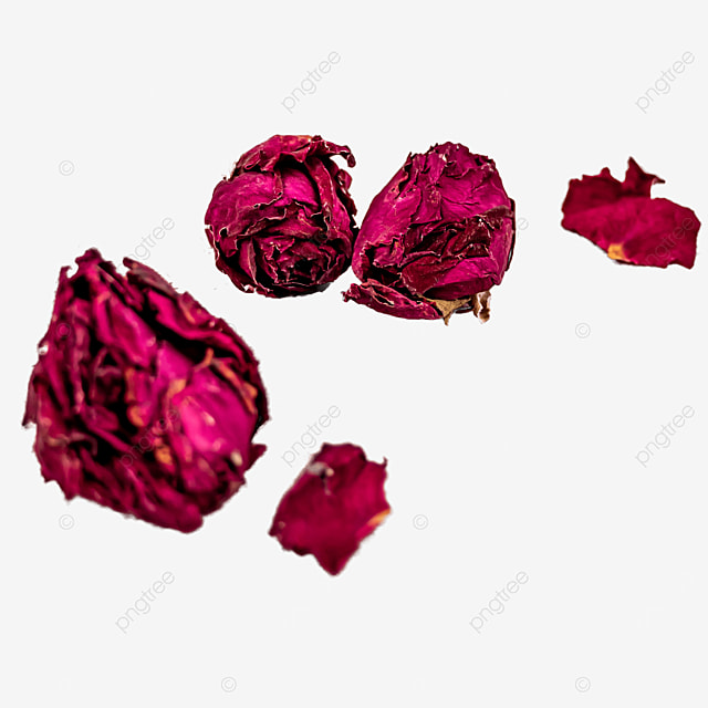 rose dried flower plant healthy herb
