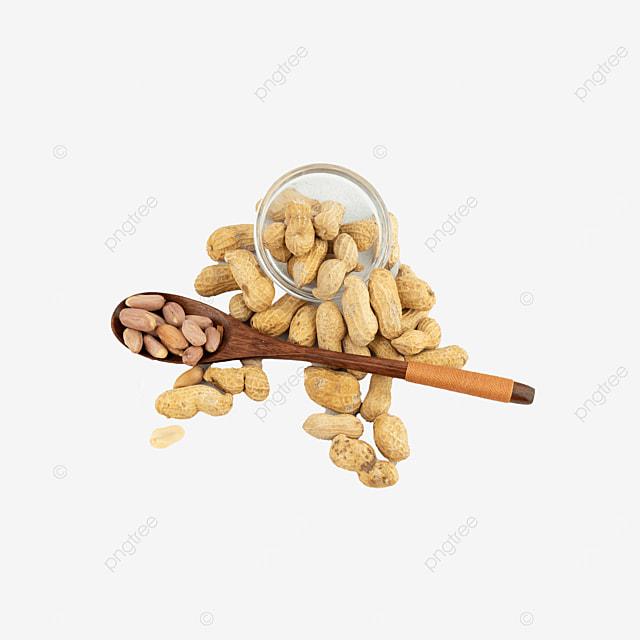 fruit protein peanut shell peanut
