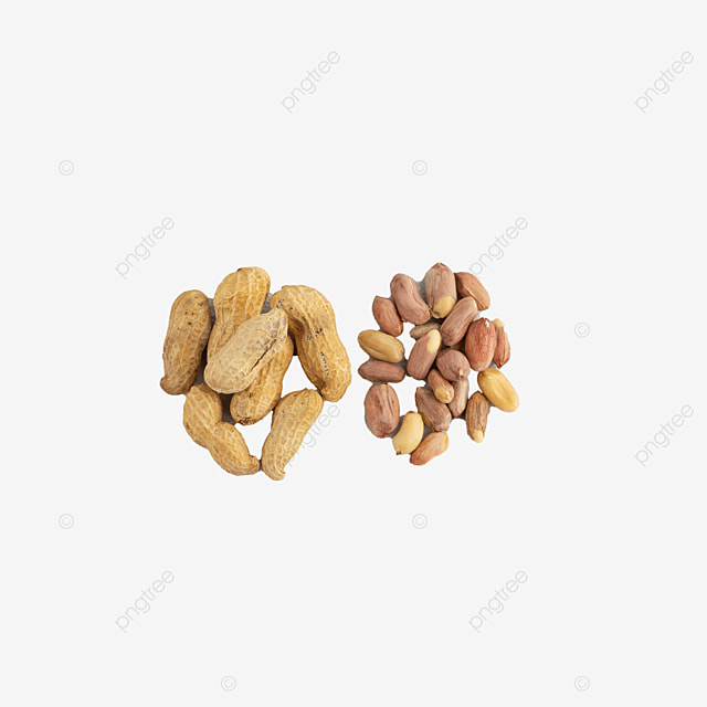 nutrition photography diagram peanut butter peanuts