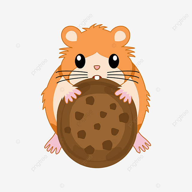 hamster eating chocolate chip cookie clipart