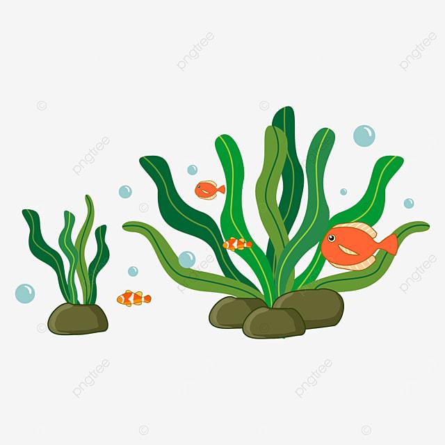 orange fish and seaweed clipart