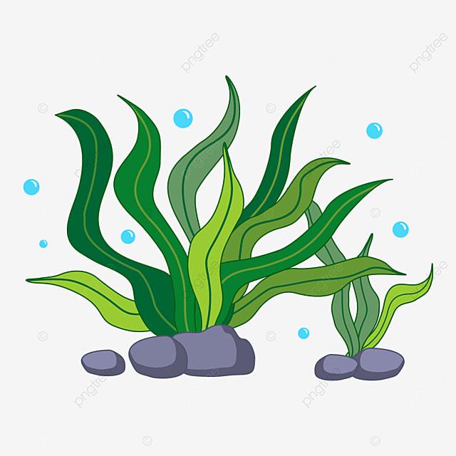 swinging seaweed clip art