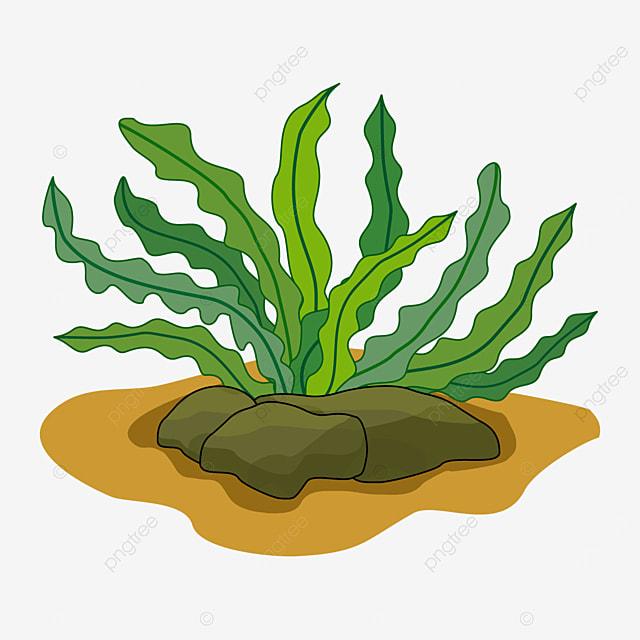 wriggling seaweed clip art