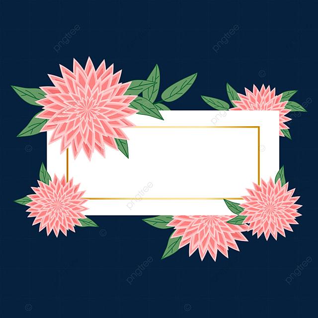 pink beautiful dahlia border