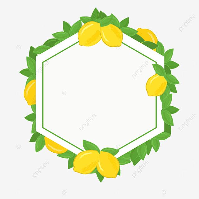 beautiful hexagonal creative lemon border