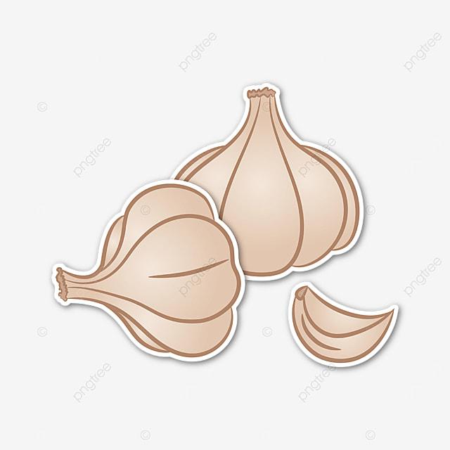 beige garlic clove garlic clip art