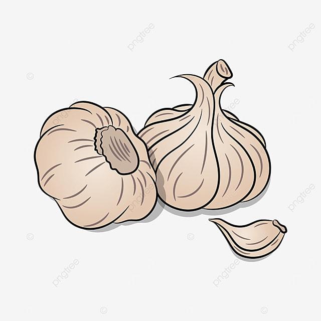 combination garlic clip art