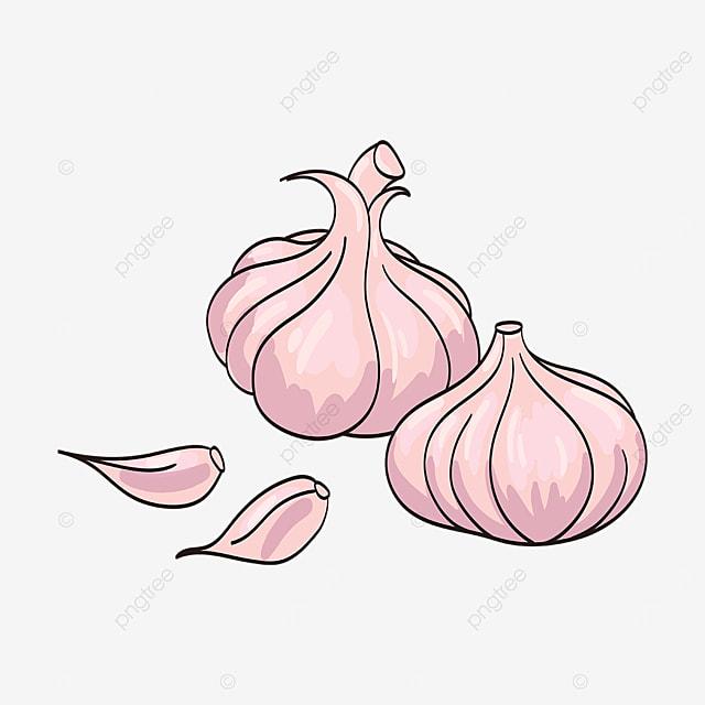 pink garlic clipart