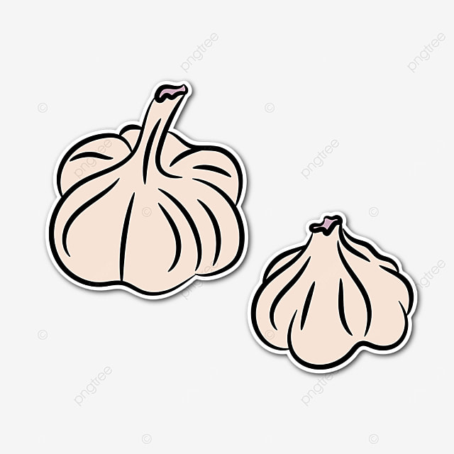 two garlic clipart