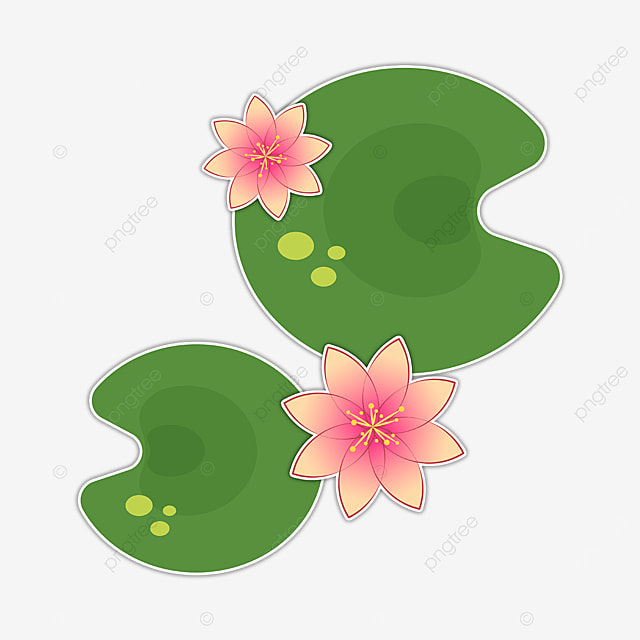 beautiful water lily clipart