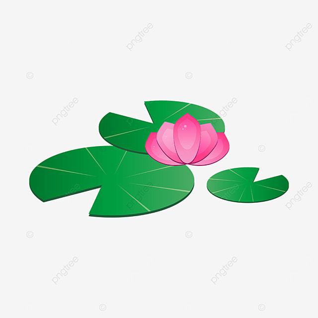 dark green leaf water lily clip art