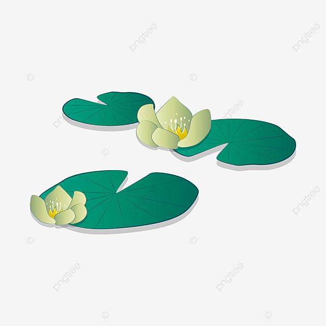elegant water lily clip art