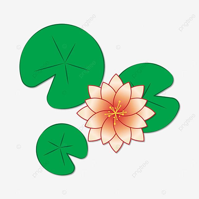 multiple petals water lily clip art